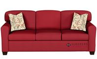 Savvy Zurich Sleeper Sofa in Oakley Tomato (Queen)