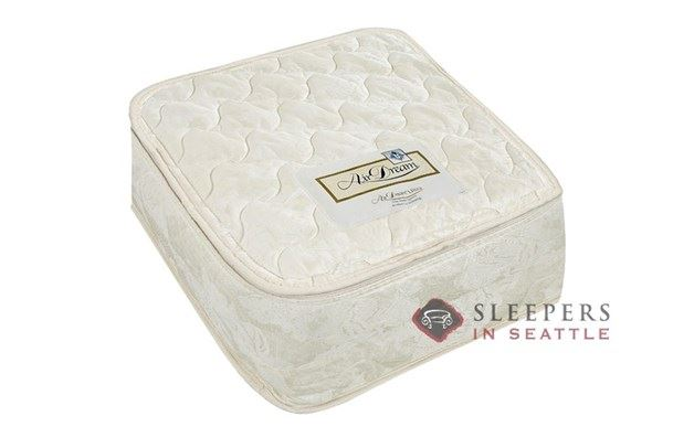 The Air Dream Queen Sleeper Mattress
