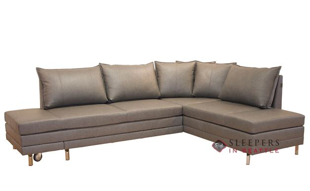 Luonto Curry Sectional Queen Leather Sleeper Sofa