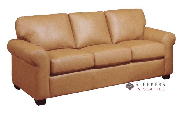 Dreamsations 101 Queen Leather Sleeper Sofa by Omnia