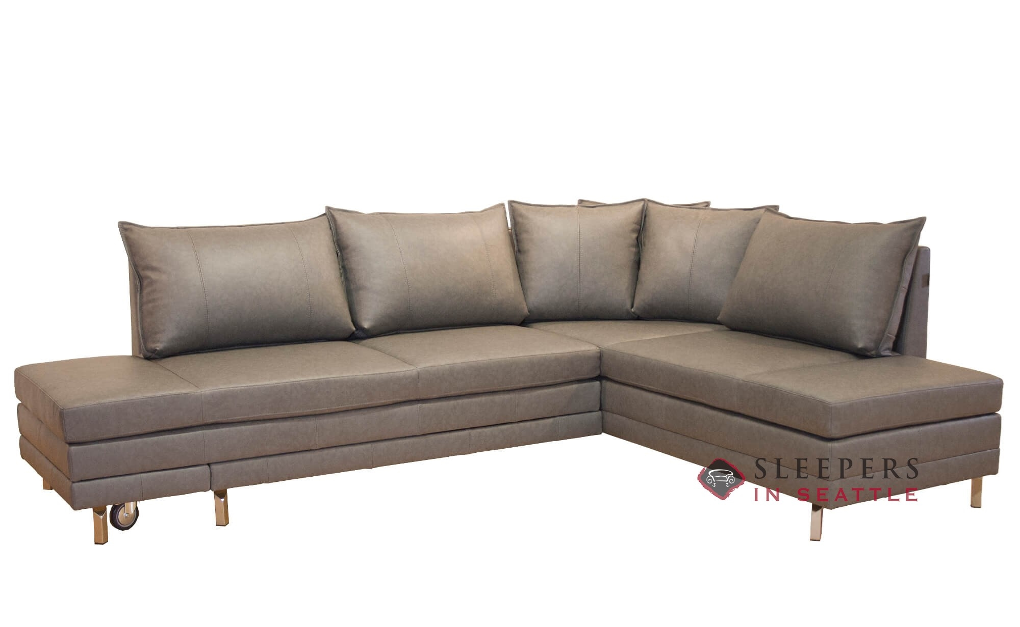 Luonto Curry Chaise Sectional Queen Leather Sleeper Sofa