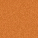 Dazzle Tangerine
